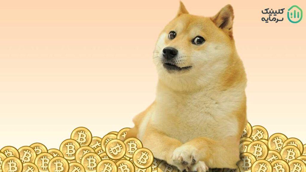 نماد ارز دیجیتال دوج