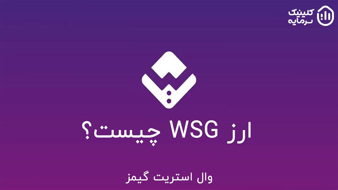 ارز WSG چیست